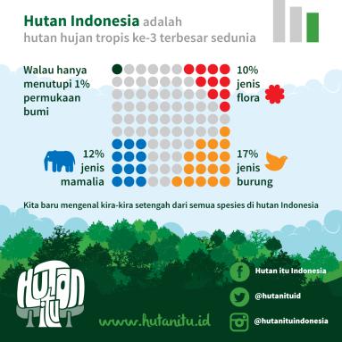 infografis-2a-hutan-itu