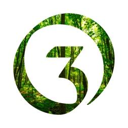 Orkestri-logo-forest